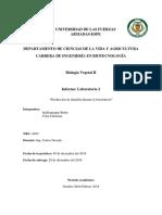 Informe II_Almidón_Quillupangui_Coba_NRC_4052.docx