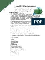 Placa Caracteristica LABORATORIO N03