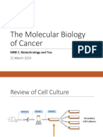 07 the Molecular Biology of Cancer
