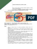 Rezumat Circulatia.docx