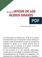005-Biosintesis de Los Ácidos Grasos.13-1