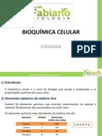 Bioquimica Celular