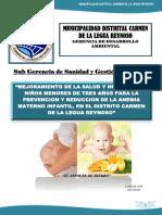 PLAN ANEMIA ULTIMO.docx