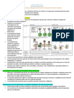 4 - Imunidade inata, inflamação, citocinas, migração de leucocitos e mecanismos efetores celulares.docx