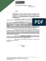 MODELO EJECUTO MEDIDAS DE PROTECCION.docx