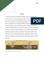 btec final paper