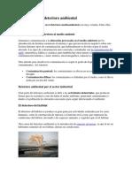 Problemas del  deterioro ambiental.docx