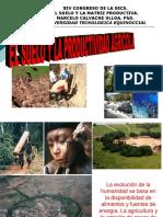 LOS_SUELOS_DEL_ECUADOR.ppt