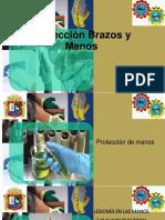 Proteccion-Brazos-y-Manos-EXPOSIONFINAL.pptx
