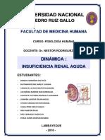 DINÁMICA-INSUFICIENCIA-RENAL-AGUDA.docx