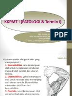 5. Musculoskeletal2 (1).pptx