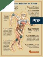 f_poderenaccion.pdf
