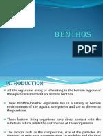 BENTHOSS.ppt