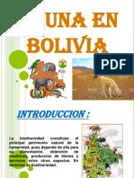 UNA EN BOLIVIA