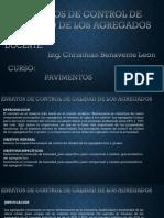 ENSAYO TAREA PPT (1).pptx