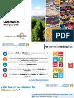 Sistemas Alimentarios Sostenibles