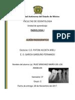 ALBÚM RADIOGRAFICO.docx