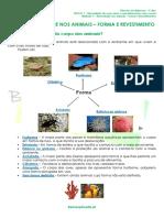 1.1 - Diversidade dos animais - Forma e Revestimento - Ficha Informativa.pdf