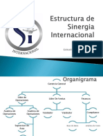 Estructura de Sinergia Internacional Borrador in Progress Part 2