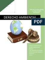 Conferencia de Naciones Unidas Sobre Medio Ambiente y Desarrollo