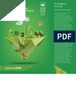 undp-co-evaluacionSGR-2016.pdf