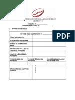 Modelo Informe Final 2019-Didáctica