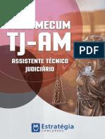 capa_Assistente_tecinico-merged.pdf