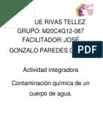 RivasTellez Enrique M20S1 Contaminacionquimicadelagua