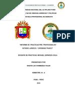 INFORME DE PRACTICAS.docx