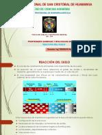 8. Reaccion del suelo.pptx