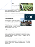 Sector Agricultor
