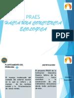 PRESENTACION LUNES 8 DE JULIO.pptx