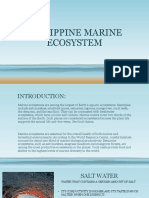 1.2philippine Marine Ecosystem