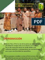 Vestimenta de  La Amazonia Peruana