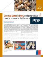 FICHA 35 Cebolla Valinia