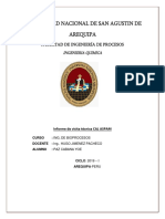 UNIVERSIDAD NACIONAL DE SAN AGUSTIN DE AREQUIPA.docx