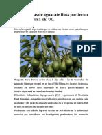Noticia comercio exterior (2).docx