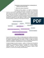 Impacto del modelo pedagógico.docx