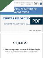 CURVAS-DE-DECLINACIÓN-FINAL.pptx