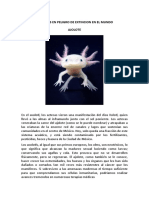 AJOLOTE.docx