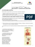 GUIA DE BIOLOGIA 6_3.doc