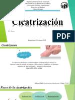 Cicatrización-1