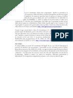 informe.docx.docx