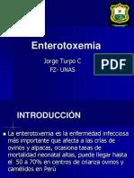 Enterotoxemia.ppt