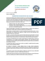 PARAMETROS_VALVULAS.docx