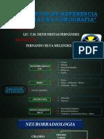 PUNTOS DE REFERENCIA PARA UNA TEM.pptx
