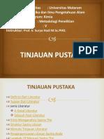 4. LITERATURE REVIEW.en.id.pptx