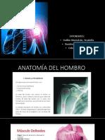 EXPOSICION TRAUMATOLOGIA -HOMRRO-