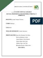INFORME DE BIOLOGÍA.docx