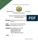 Informe de Aceite de Oliva